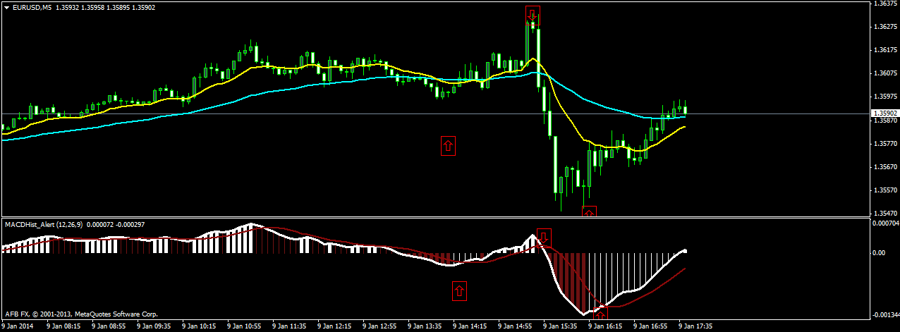 binary options bot for macd strategy